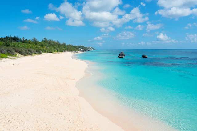 Bermuda online